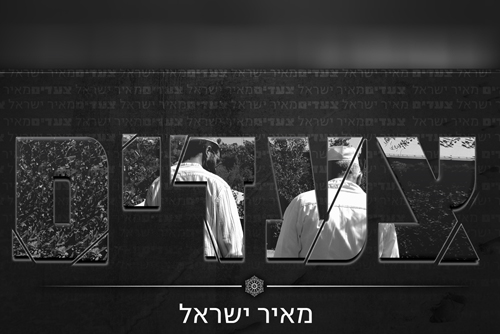 מאיר ישראל - צעדים