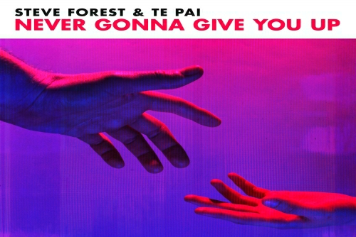 Steve Forest and Te Pai - Never Gonna Give You Up