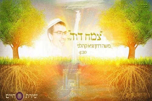משה דדון וגיא קהלני - צמח דוד