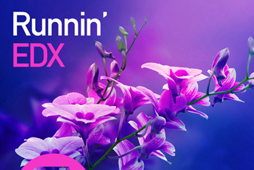 EDX - Runnin